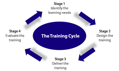 The_training_cycle