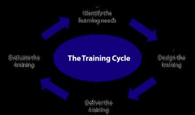 Ce are nevoie online-ul romanesc, in materie de training?