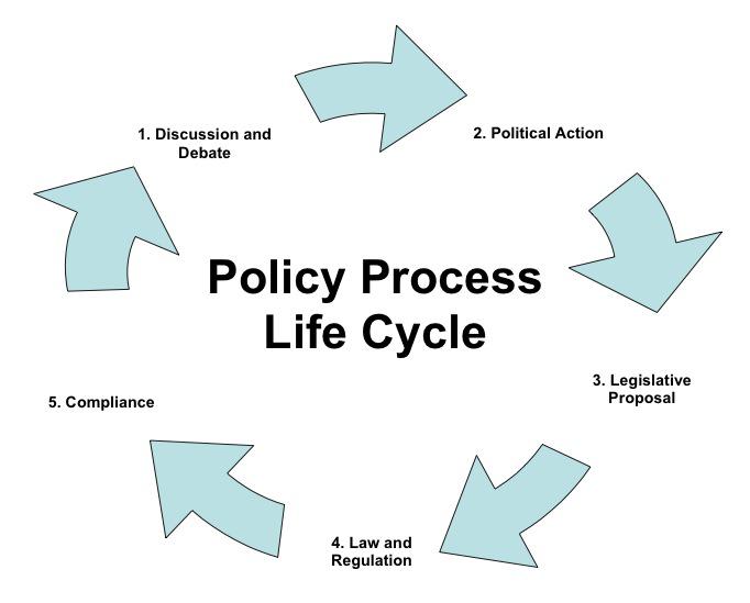 Apel la ratiune: politici versus politica